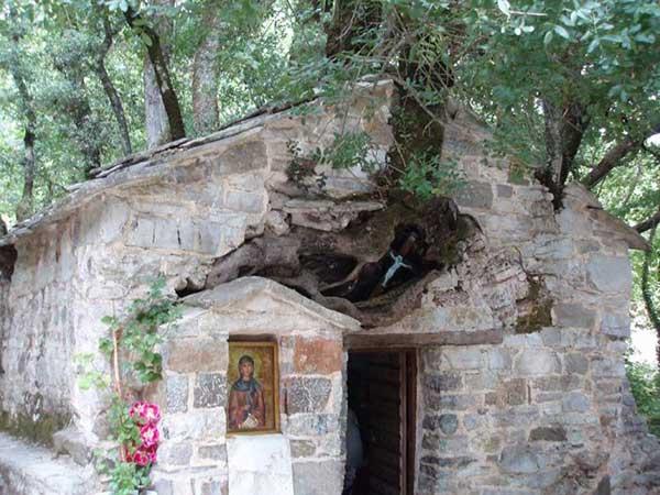 Εκκλησία με 17 πλατάνια: Το εκκλησάκι που μπήκε στο ρεκόρ Γκίνες