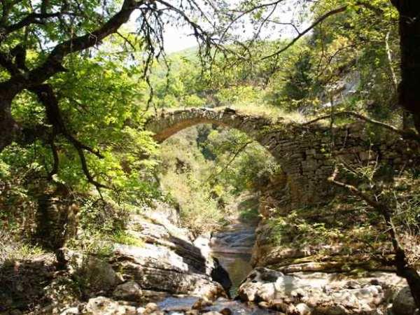 Μονότοξο γεφύρι Τσιγγενορρέματος ή Άνω Ιεράς Μονής Ξενιάς